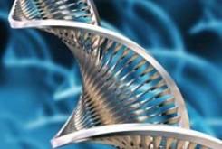 معرفی رشته های تحصیلی : بیوتکنولوژی