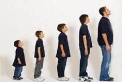 n00029680 b رشد قد انسان از چندسالگی متوقف می شود؟