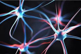 کشف اثرات یک ژن در بروز بیماری اسکیزوفرنی