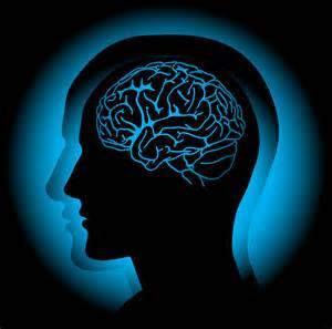 مغز را بیشتر بشناسیم