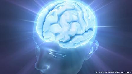 ارتباط برخی خصوصیات مردان با حجم ماده خاکستری مغز