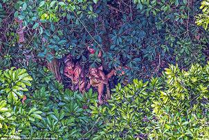 کشف قبیله آدم خوارها در جنگل های آمازون + عکس