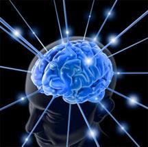 ۱۰ عامل مهم تخریب مغز