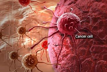 چرا سرطان درمان ندارد؟