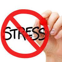 استرس، مغز را کوچک میکند
