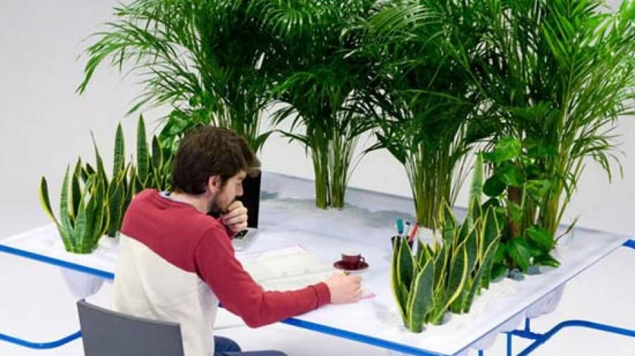 ارتباط سلامت روان با نگهداری گل و گیاه در منزل و محیط کار