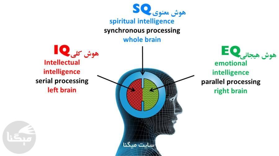 هوش معنوی (SQ) چیست؟