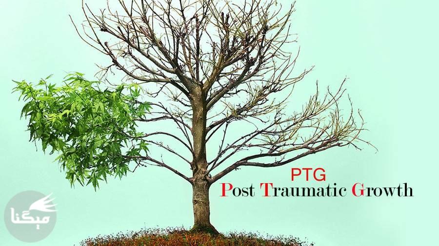 رشد پس از سانحه (PTG)