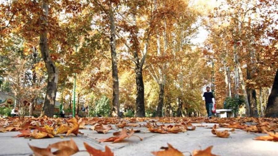 پاییز افسرده میکند؟ یا دارید ادا درمیارین؟
