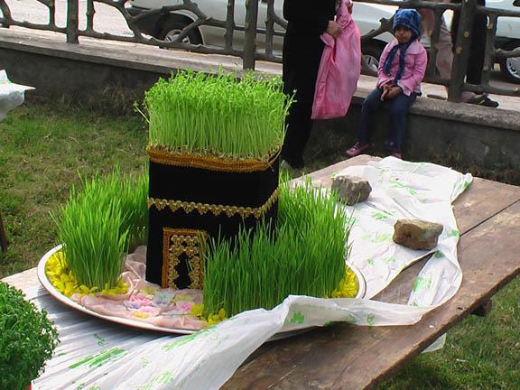سبزه عید با بذر سیاه دانه میگنا - طرز تهیه انواع سبزه عید به زبان ساده